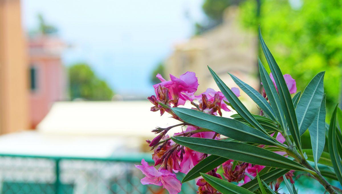 Monterosso al Mare (16)